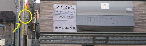 taiyo-210223.3.jpg